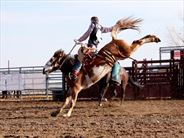 Classic rodeo - Escorted Tours in the USA