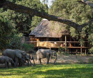 Bilimungwe Bushcamp