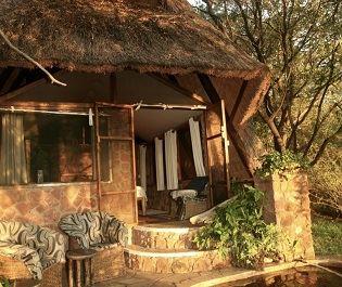 Musango Camp