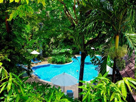 Tropical gardens at Paradise Beach Resort