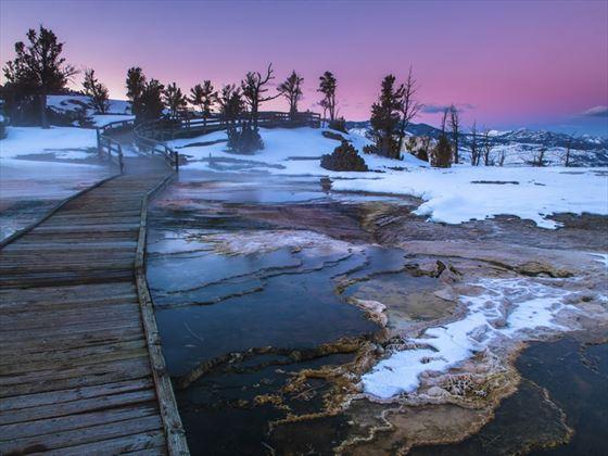 Yellowstone winter landscape at sunset