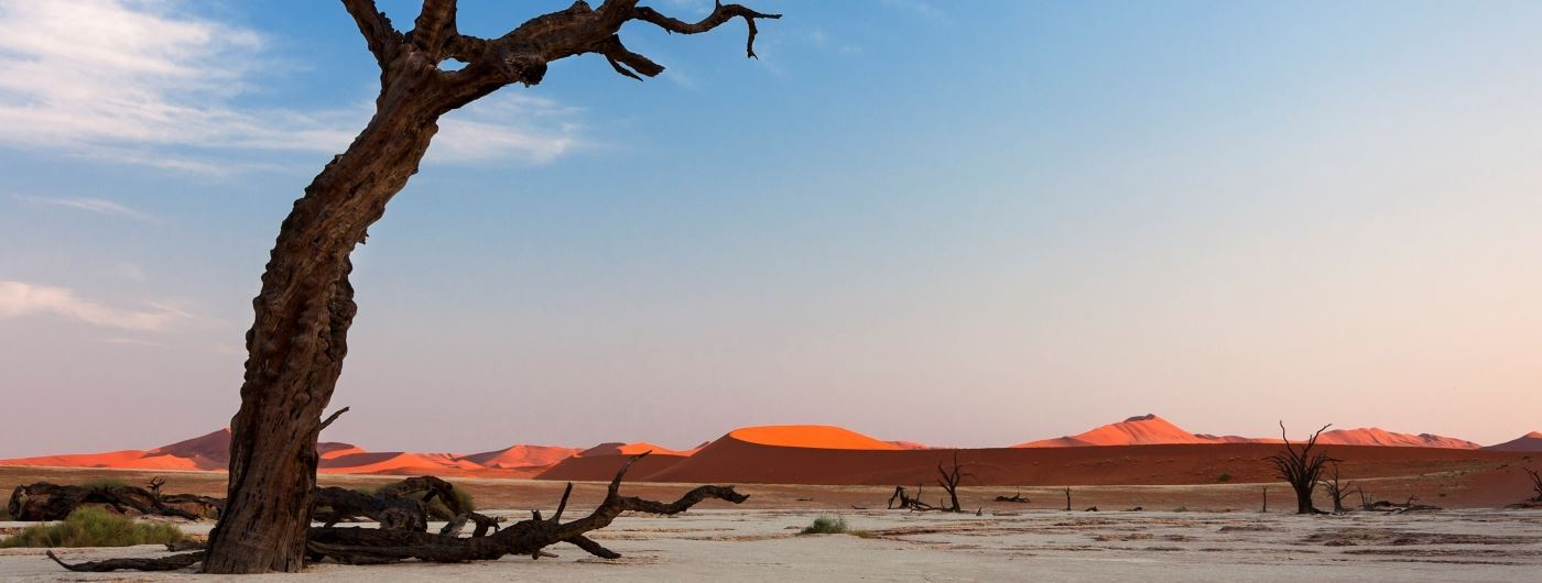Dead Vlei in Sossusvlei - getty