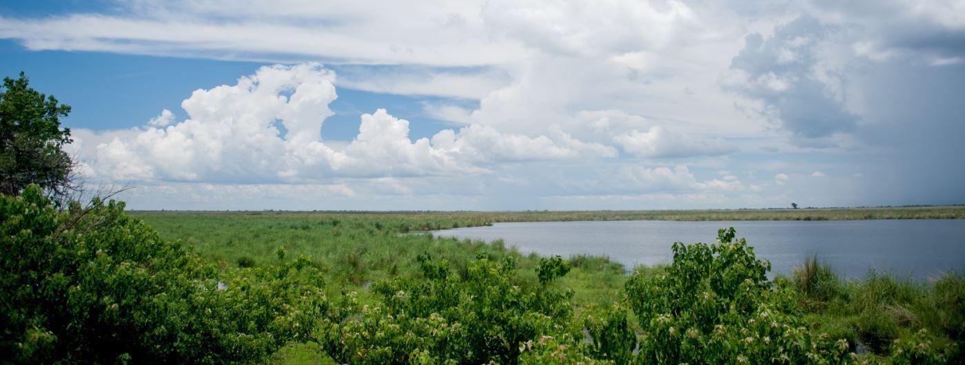 Linyanti Wetlands - getty