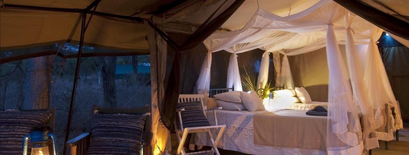 Offbeat Meru tent interior