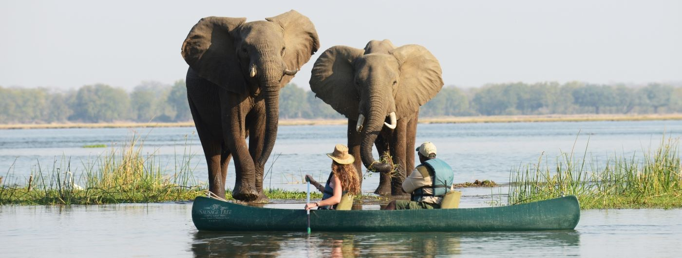 Canoeing safari
