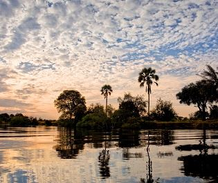 Getty image - Lower Zambezi NP