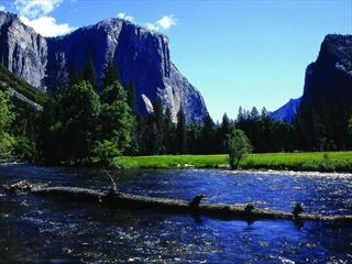 Summertime in Yosemite National Park