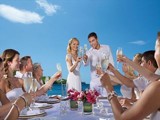 Toasting the Bride & Groom at Dreams Las Mareas