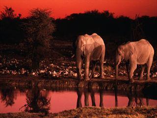 - Namibia Holidays