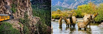 Durango and Silverton Narrow Gauge Train and Rocky Mountains Wildlife