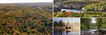 Algonquin National Park