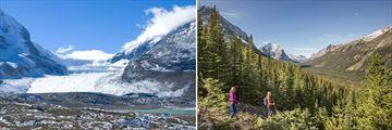 Athabasca Glacier & Jasper National Park
