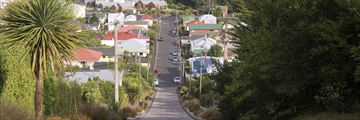 Baldwin Street, the steepest street in the world
