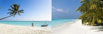 The beach at Meeru Island Resort & Spa