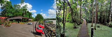 Board walk & jetty, Abai Jungle Lodge