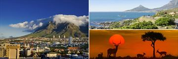 Views of Table Mountain, Cape Town and Kruger National Park