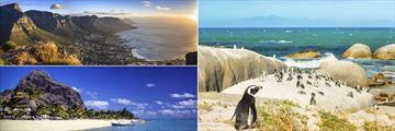 Cape Town panorama, Boulders Beach & Beach at Le Morne