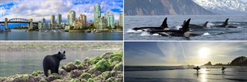 Clockwise from top left: Vancouver skyline, whale watching in Vancouver, surfers in Vancouver Island, and black bears in Tofino