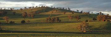 Beautiful farmland in New South Wales