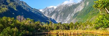Franz Josef Glacier in the spring