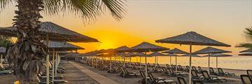 The beach at Gloria Verde Resort
