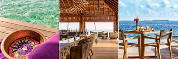 Hurawalhi Island Resort, Duniye Spa, Coco Bar and In-Villa Dining