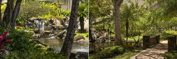 Waterfall and Gardens at Kauai Marriott Resort