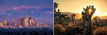 Los Angeles Skyline & The Mojave Desert