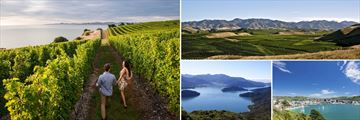 Marlborough Vineyards, Marlborough Sounds & Wellington Harbour