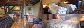 Old Leura Dairy, Milking Shed Living Area and Straw Bale Bedrooms