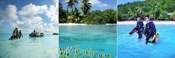 Paradise Sun, Scuba Diving