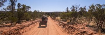 Quad biking in Kings Canyon