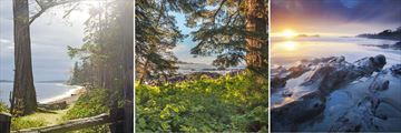 Rathtrevor Forest Trail, Pacific Rim National Park & Tofino Coastal Scenery, Vancouver Island