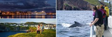 Landscapes & Activities in St. John's