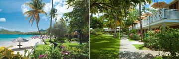 Sandals Halcyon Beach St. Lucia, Beach, Gardens and Accommodation Buildings