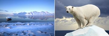 Spitsbergen Mountains & Arctic Polar Bear