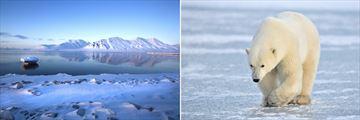 Spirsbergen Mountains & Polar Bear Sighting