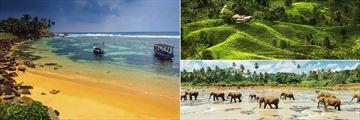 Sri Lankan landscapes