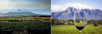 Stellenbosch Vineyards, Western Cape