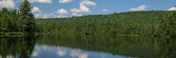 Summer at Algonquin Provincial Park
