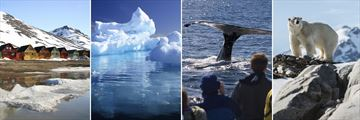 Svalbard, Arctic Glacier, Whale Watching & Polar Bear