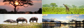 Tsavo National Park landscapes and wildlife