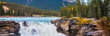 Athabasca waterfall, Jasper National Park