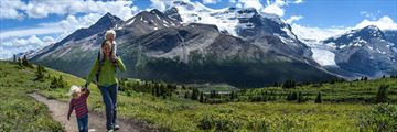 Discovering Wilcox Pass trail in Jasper, Alberta