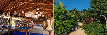 Zuri Zanzibar, Reception and Spice Gardens