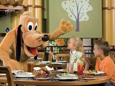 About Walt Disney World Resort
