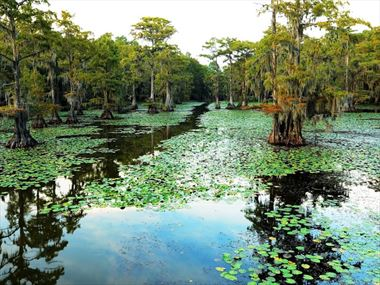 A beginner's guide to Louisiana's outdoor adventures