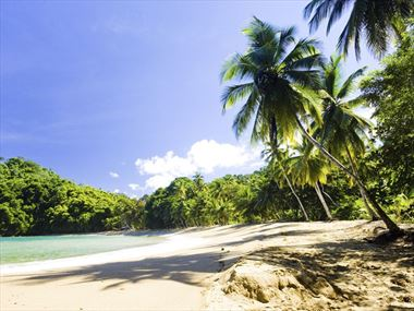 Top 10 beaches in Tobago