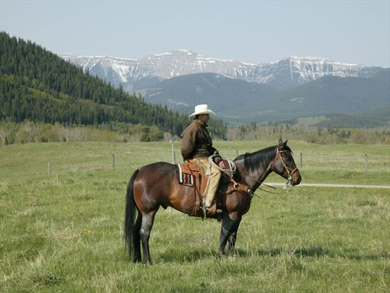 Horseback riding, south of Calgary