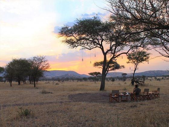 Nimali Serengeti Views
